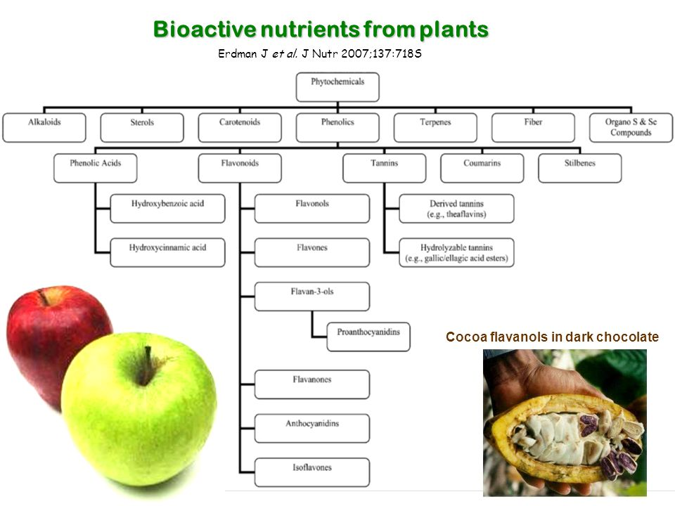 Bioactive nutrients from plants