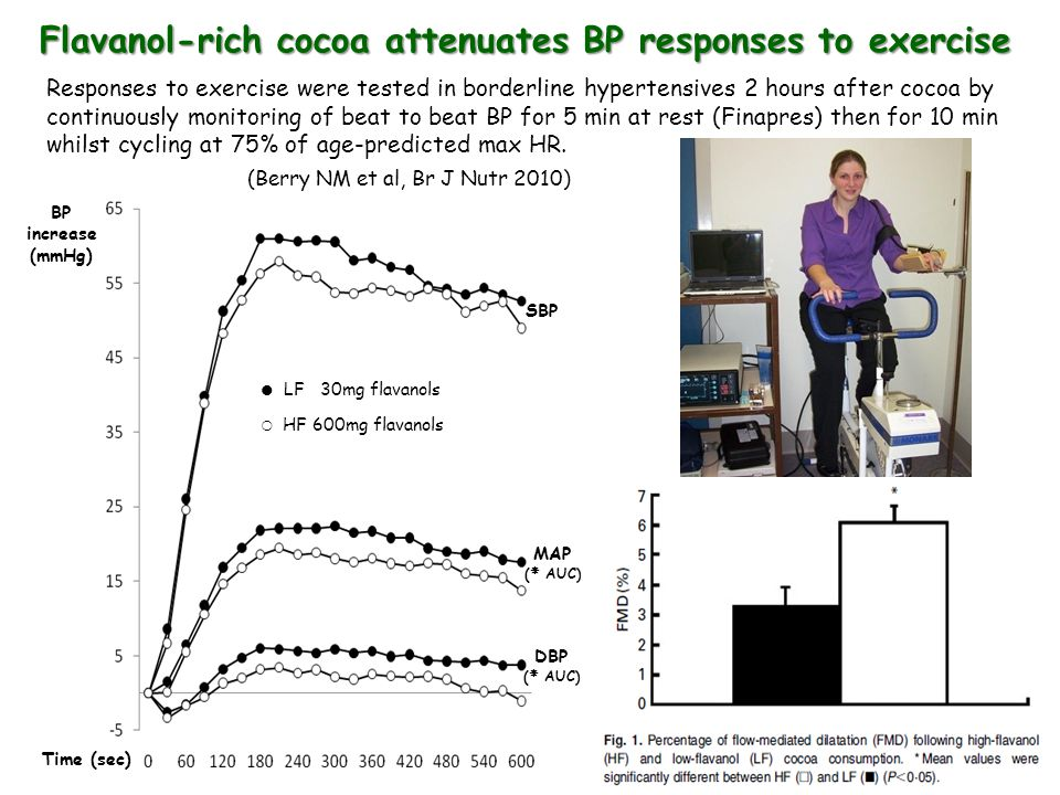 Flavanol-rich cocoa attenuates BP responses to exercise