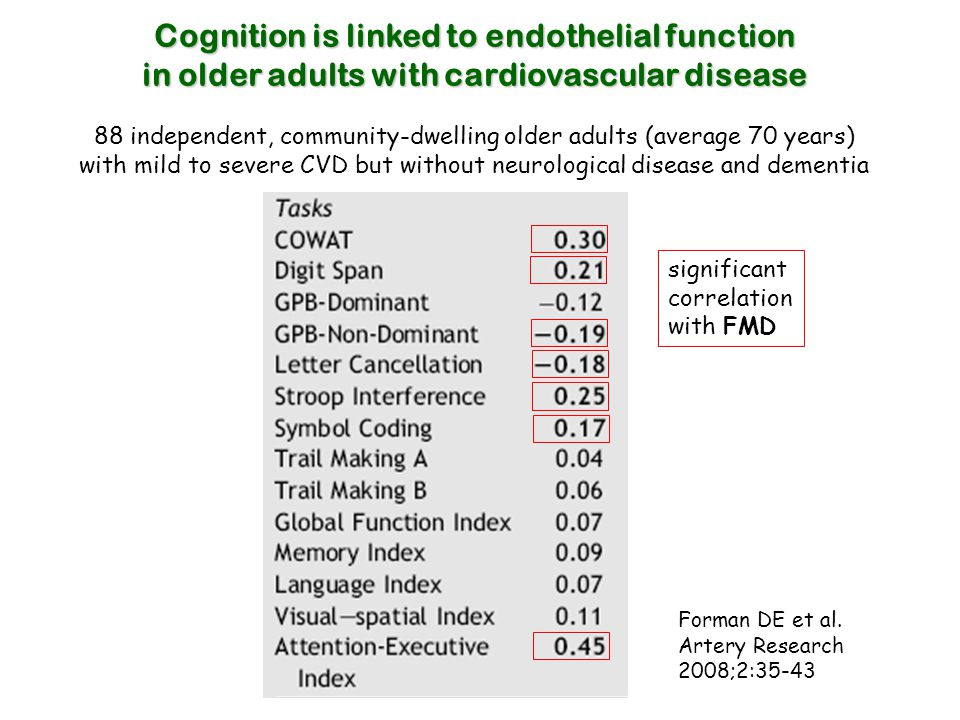Cognition is linked to endothelial function