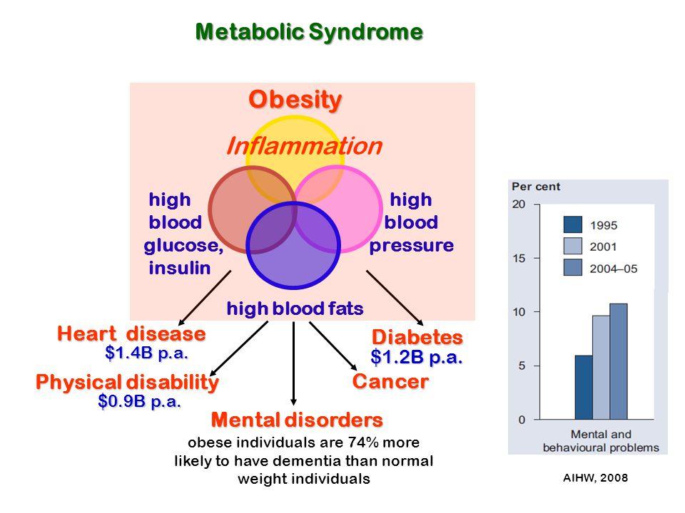 Obesity Inflammation Metabolic Syndrome Heart disease Diabetes