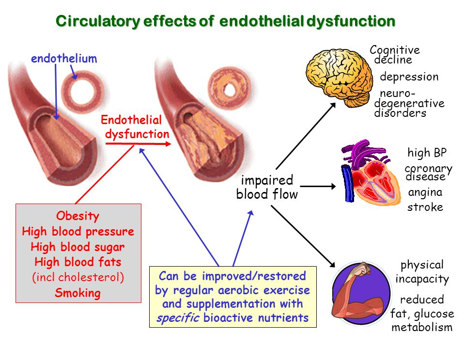 reduced fat, glucose metabolism
