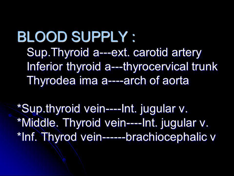 BLOOD SUPPLY : Sup. Thyroid a---ext