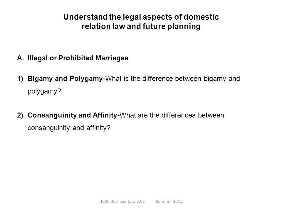 Understand the legal aspects of domestic relation law and future planning
