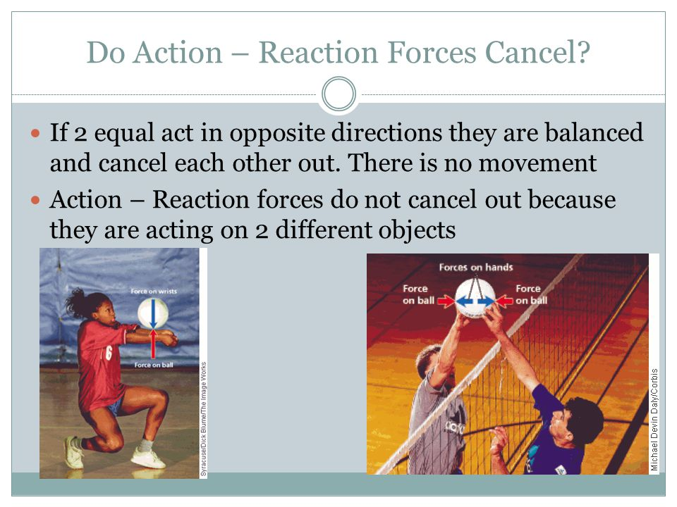 Do Action – Reaction Forces Cancel