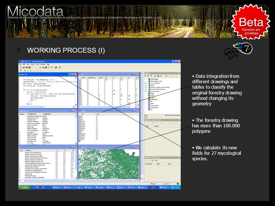WORKING PROCESS (I) Titulo, Lugar, Congreso....