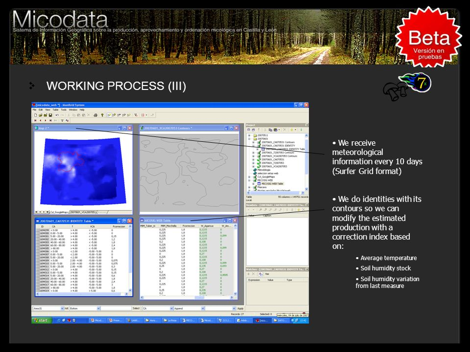 WORKING PROCESS (III) Titulo, Lugar, Congreso....