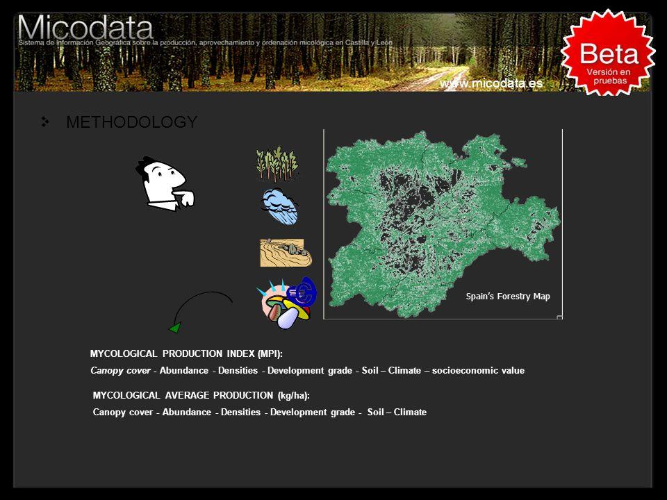 METHODOLOGY www.micodata.es Titulo, Lugar, Congreso....