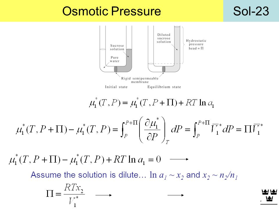 Osmotic Pressure Assume the solution is dilute… ln a1 ~ x2 and x2 ~ n2/n1
