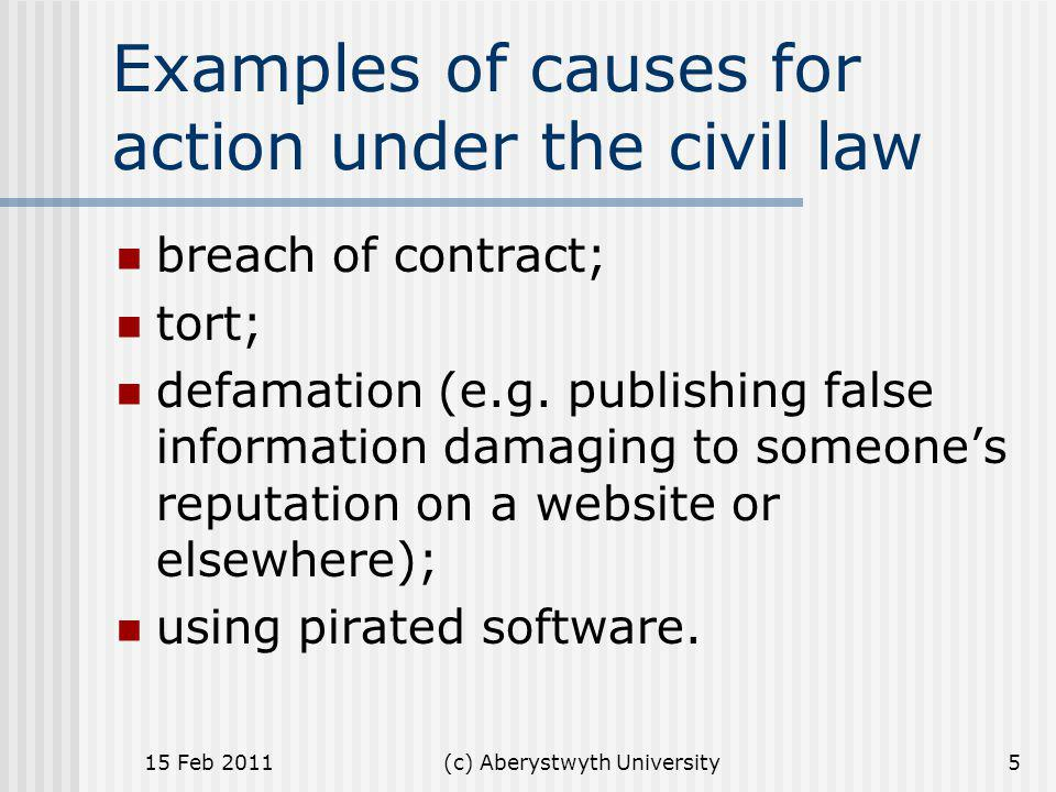 Examples of causes for action under the civil law