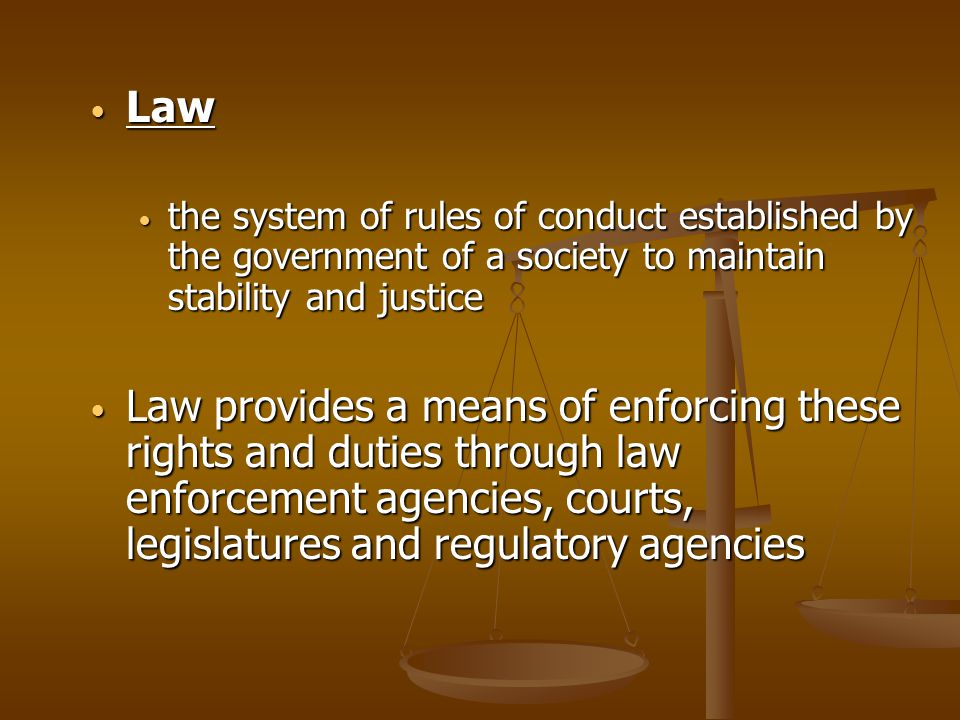 Law the system of rules of conduct established by the government of a society to maintain stability and justice.
