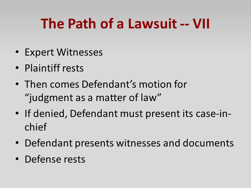 The Path of a Lawsuit -- VII