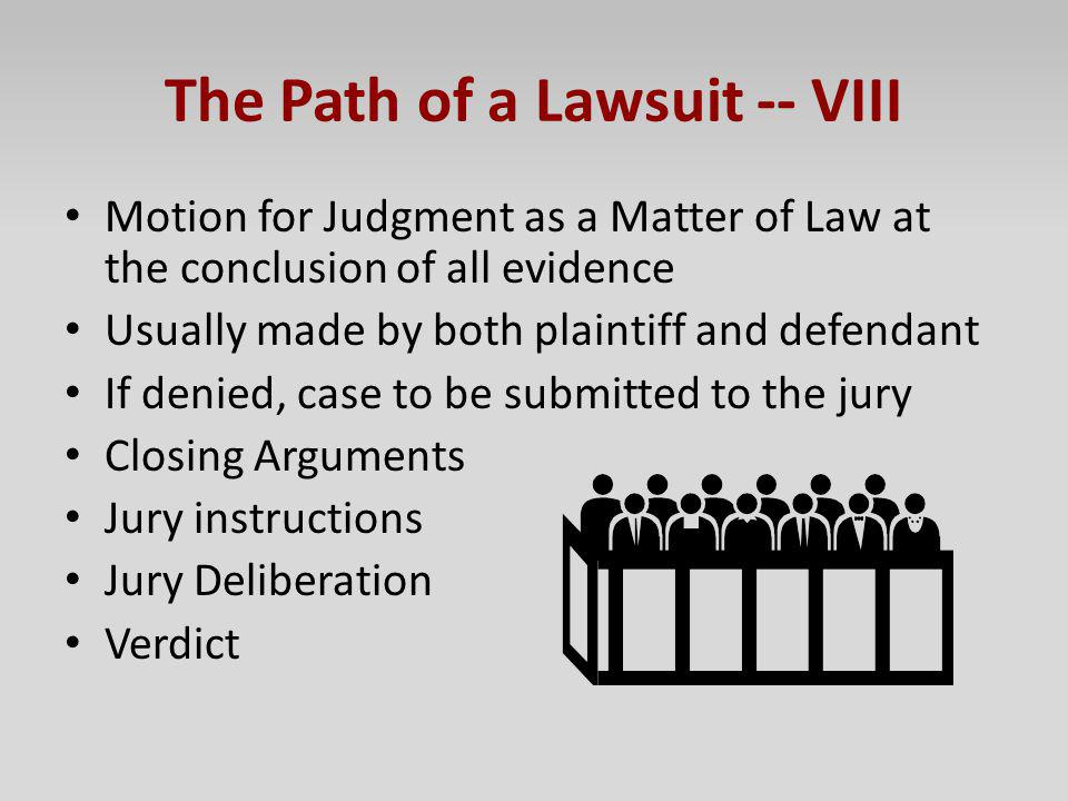 The Path of a Lawsuit -- VIII