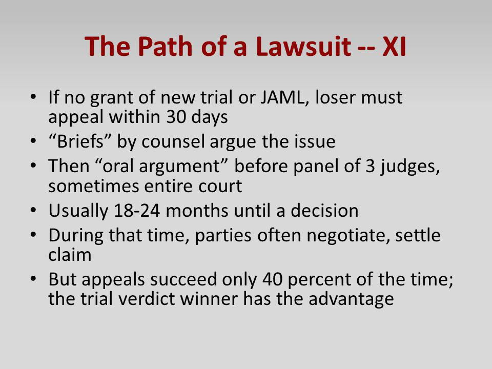 The Path of a Lawsuit -- XI