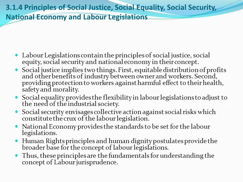 3.1.4 Principles of Social Justice, Social Equality, Social Security, National Economy and Labour Legislations