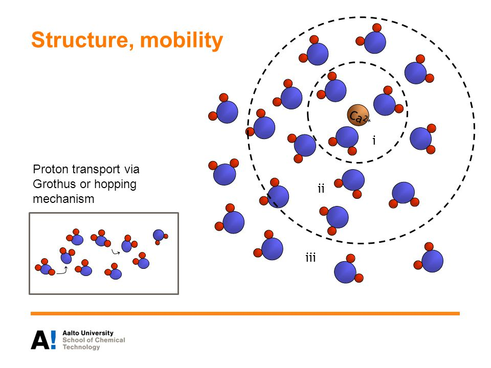Structure, mobility Ca2+ i