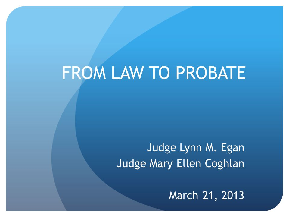 Judge Lynn M. Egan Judge Mary Ellen Coghlan March 21, 2013