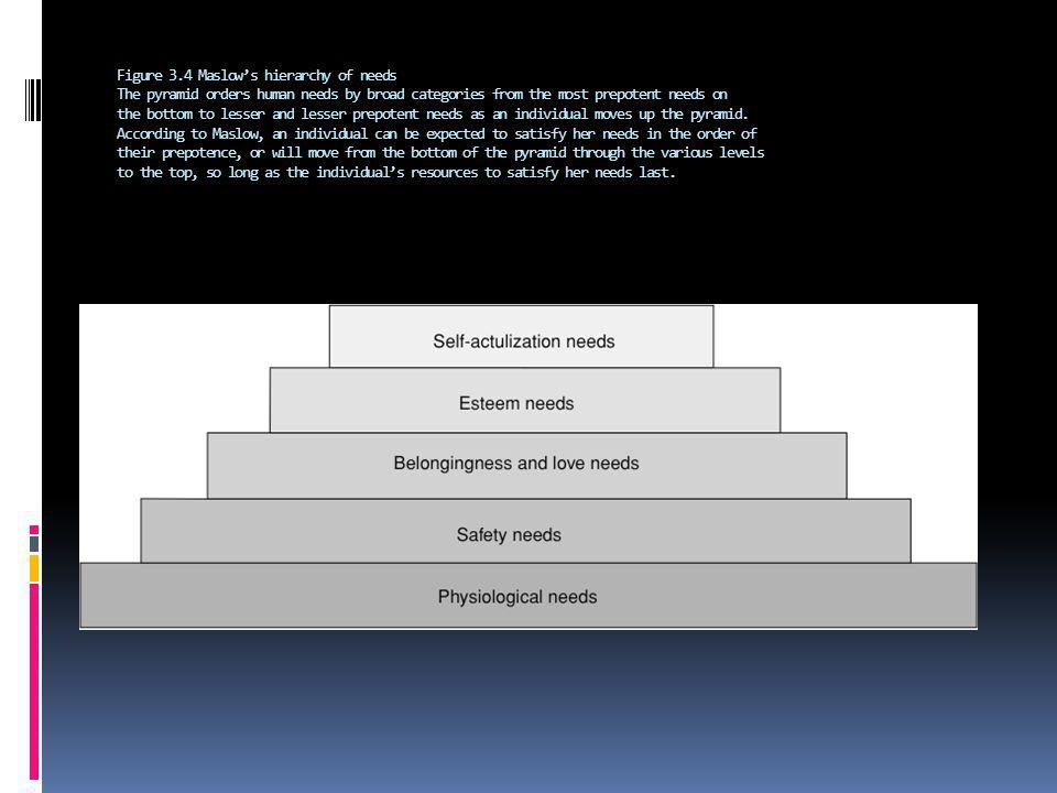 Figure 3.4 Maslow's hierarchy of needs The pyramid orders human needs by broad categories from the most prepotent needs on the bottom to lesser and lesser prepotent needs as an individual moves up the pyramid.