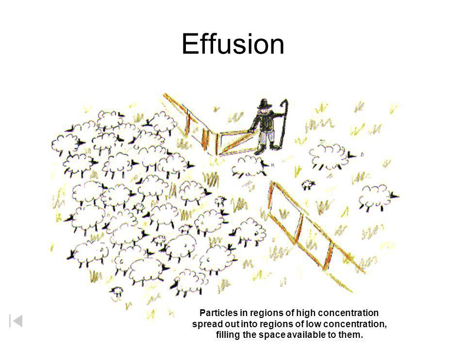 Effusion Particles in regions of high concentration