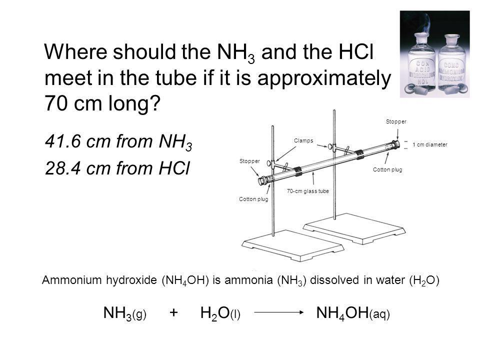 Where should the NH3 and the HCl meet in the tube if it is approximately 70 cm long