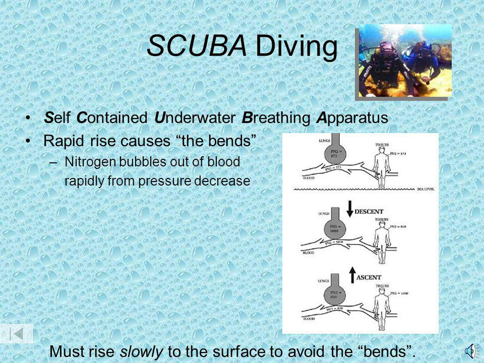SCUBA Diving Self Contained Underwater Breathing Apparatus