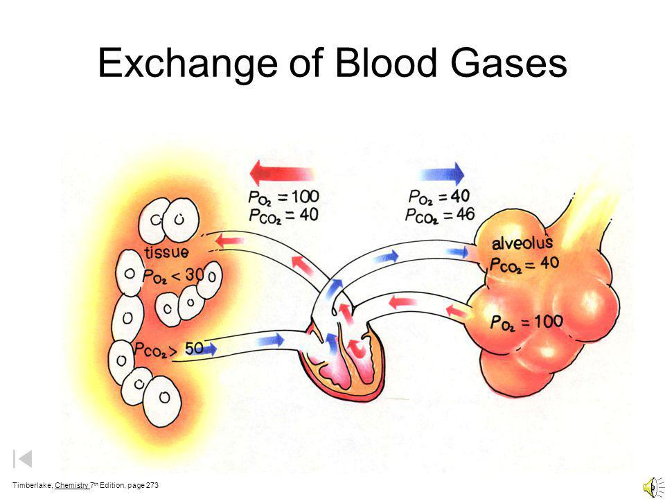 Exchange of Blood Gases