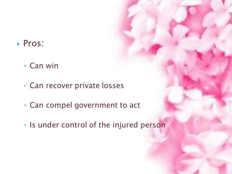 Pros: Can win Can recover private losses Can compel government to act