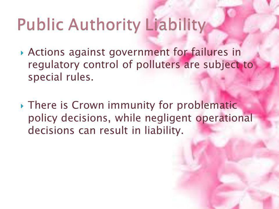 Public Authority Liability
