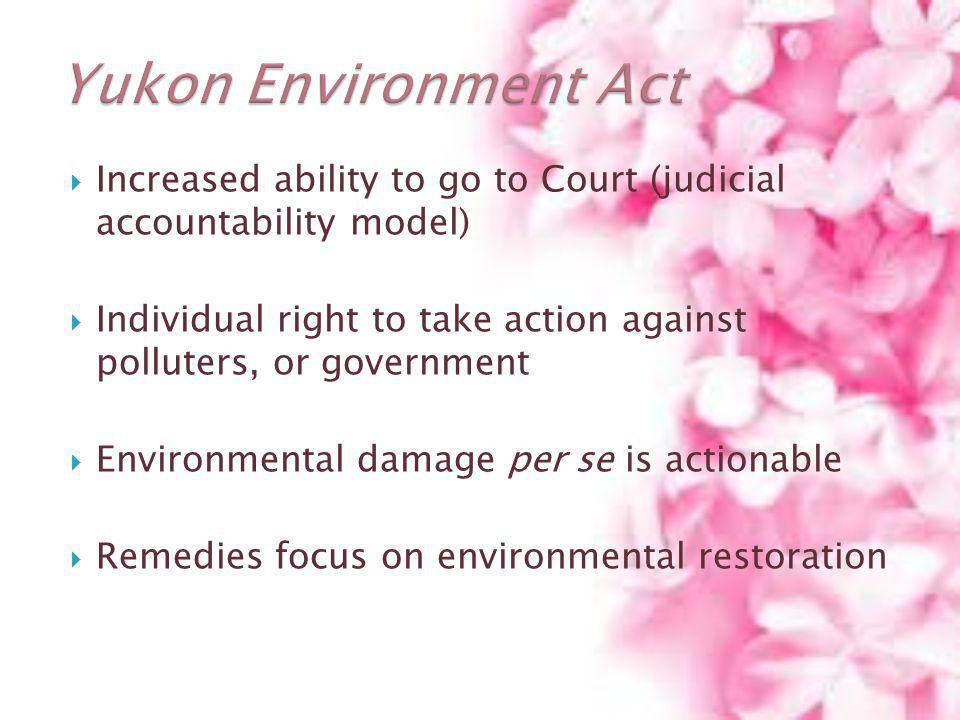 Yukon Environment Act Increased ability to go to Court (judicial accountability model)