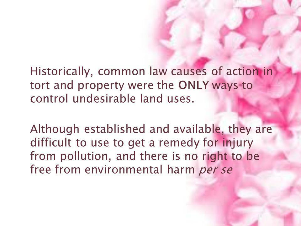 Historically, common law causes of action in tort and property were the ONLY ways to control undesirable land uses.