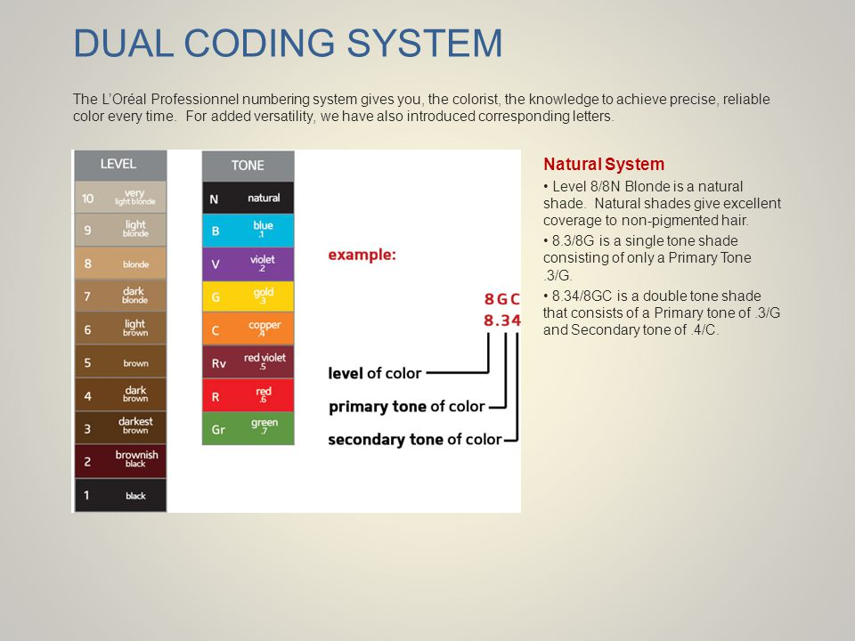 DUAL CODING SYSTEM Natural System