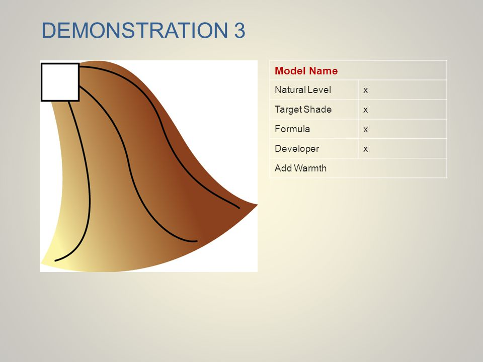 DEMONSTRATION 3 Model Name Natural Level x Target Shade Formula