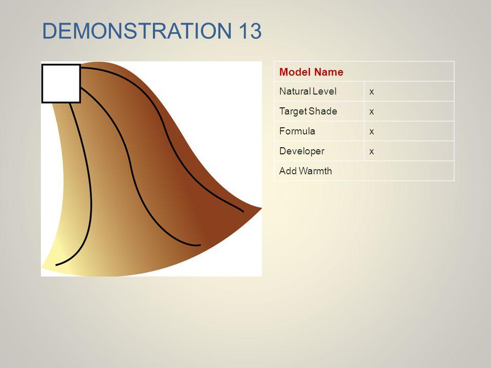 DEMONSTRATION 13 Model Name Natural Level x Target Shade Formula
