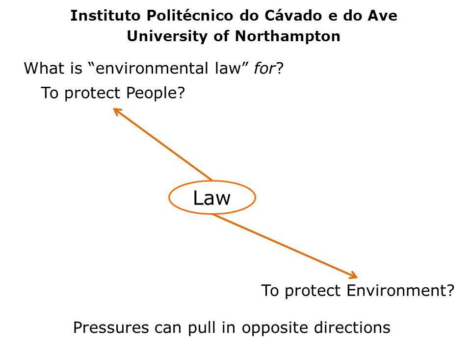 What is environmental law for