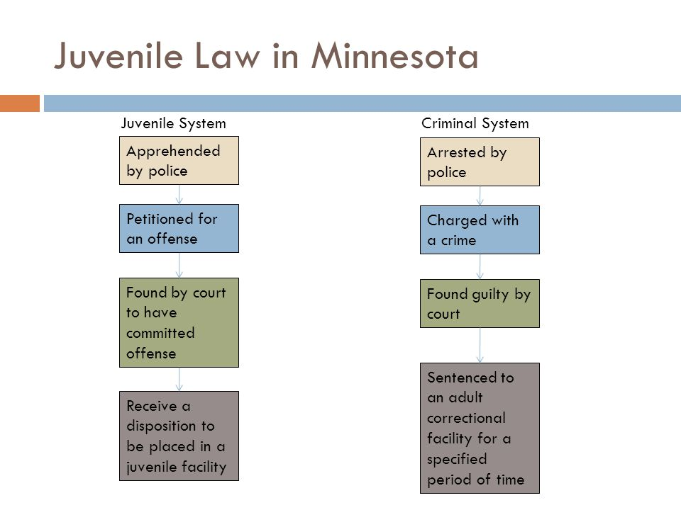 Juvenile Law in Minnesota