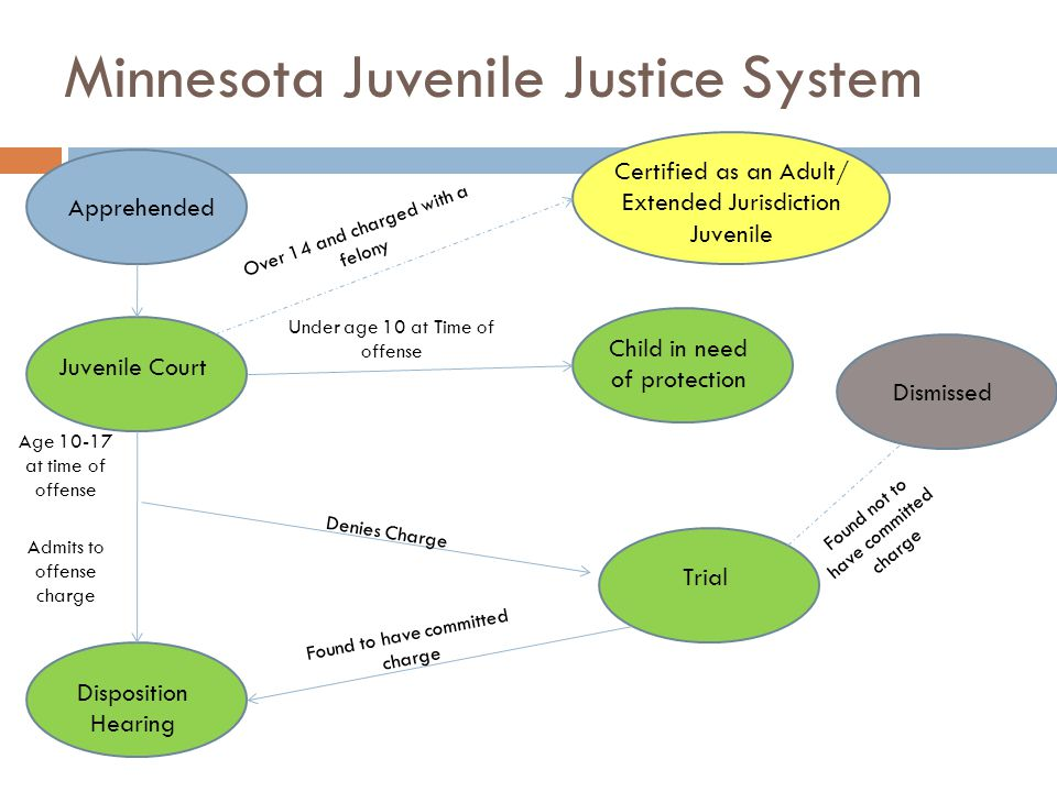 Minnesota Juvenile Justice System