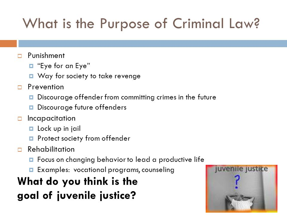 What is the Purpose of Criminal Law