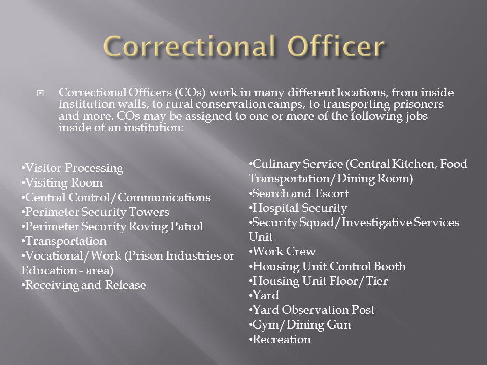 Correctional Officer