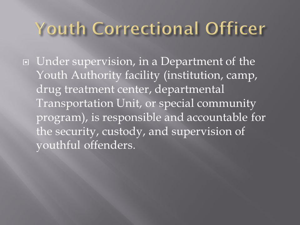 Youth Correctional Officer