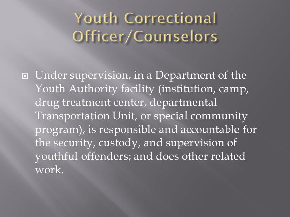 Youth Correctional Officer/Counselors