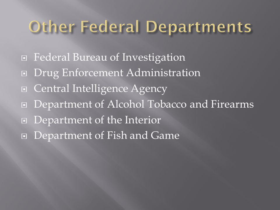 Other Federal Departments