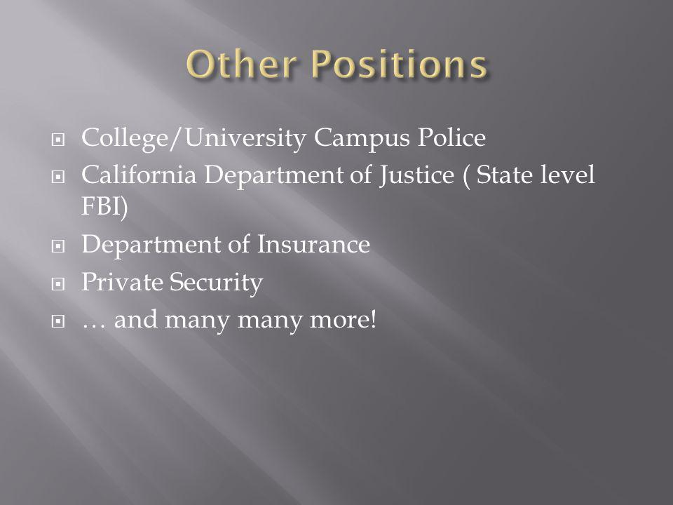 Other Positions College/University Campus Police