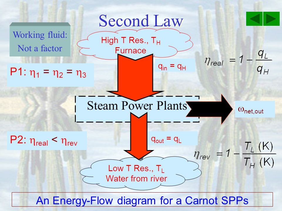 An Energy-Flow diagram for a Carnot SPPs