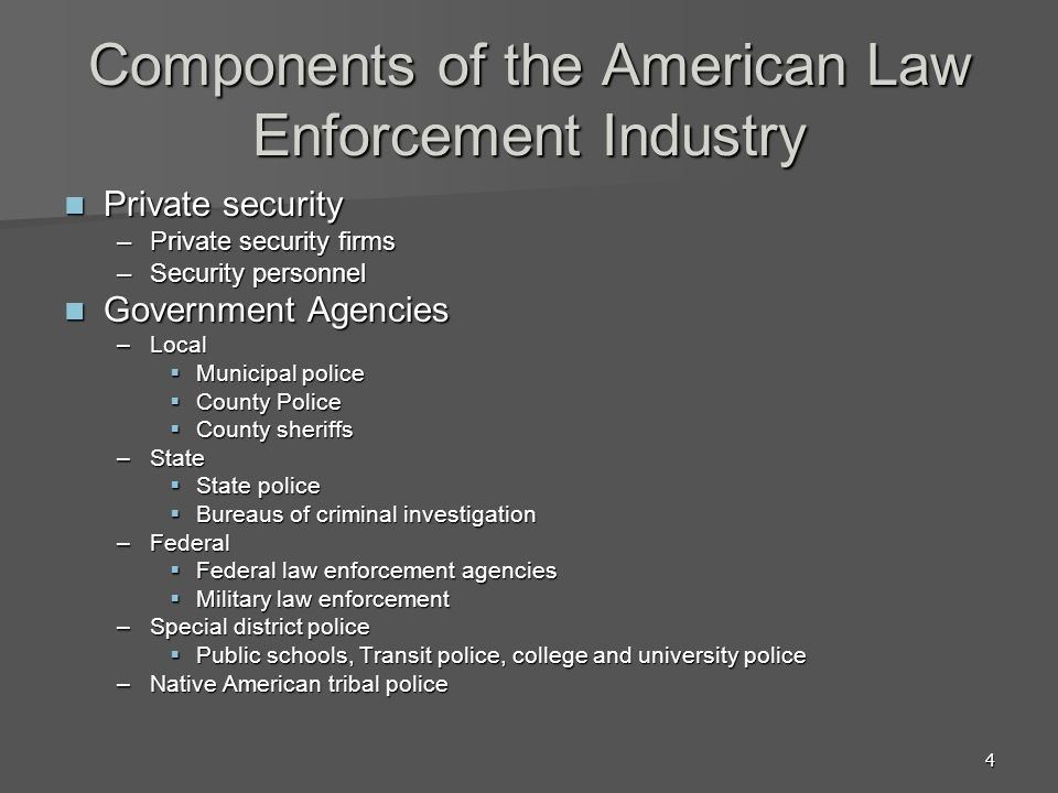 Components of the American Law Enforcement Industry