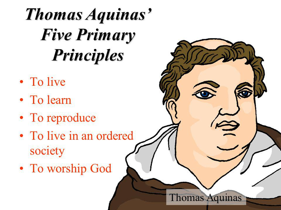 Thomas Aquinas' Five Primary Principles