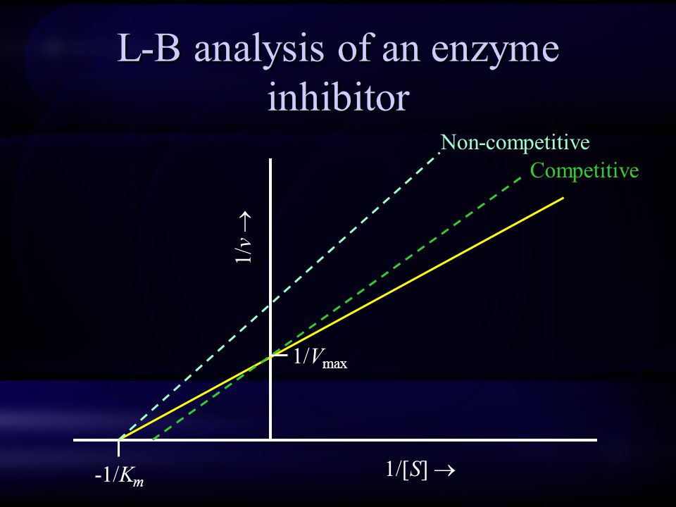 L-B analysis of an enzyme inhibitor