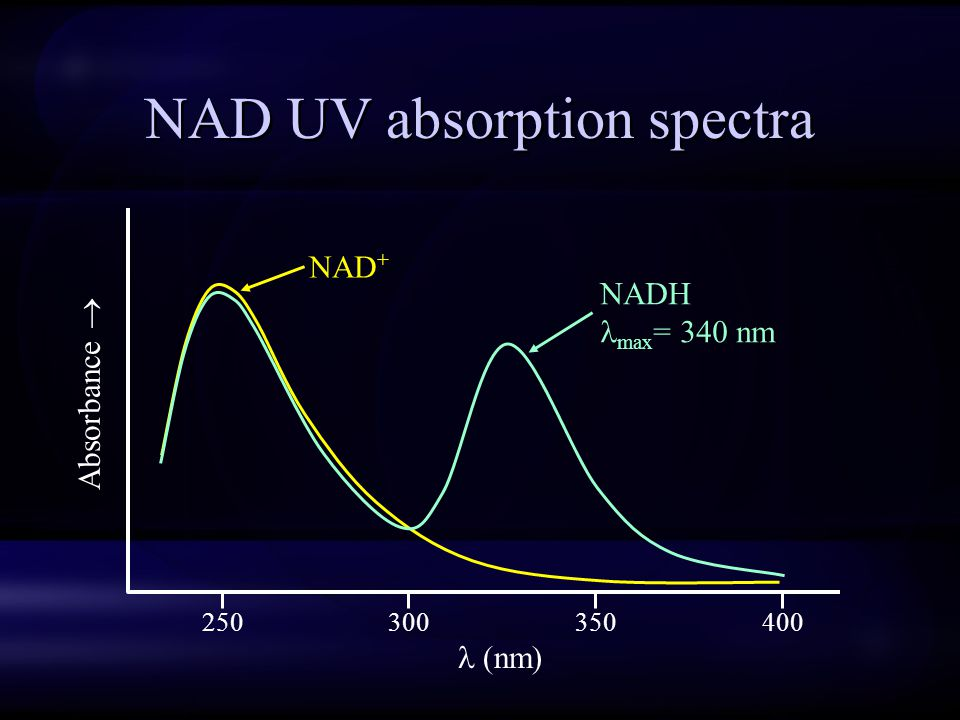 NAD UV absorption spectra