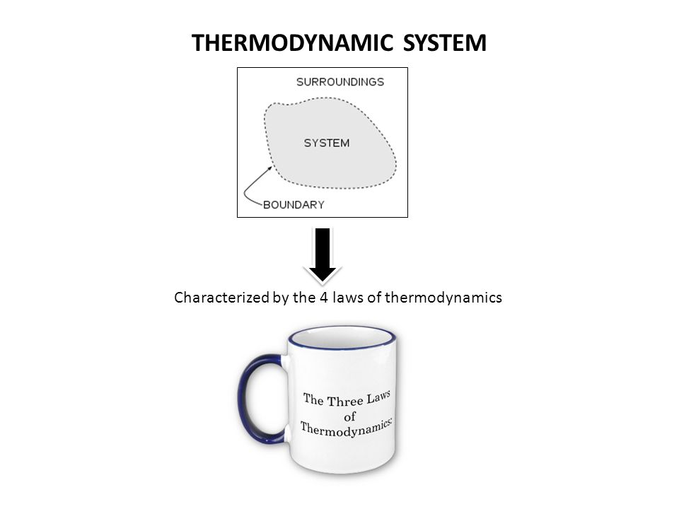 Characterized by the 4 laws of thermodynamics