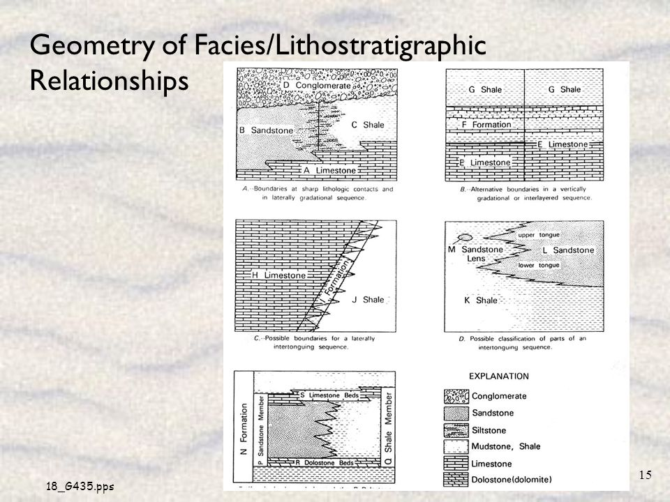 Geometry of Facies/Lithostratigraphic Relationships