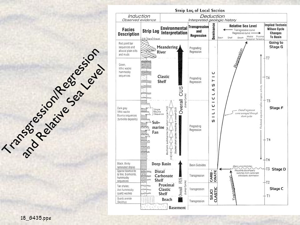 Transgression/Regression and Relative Sea Level