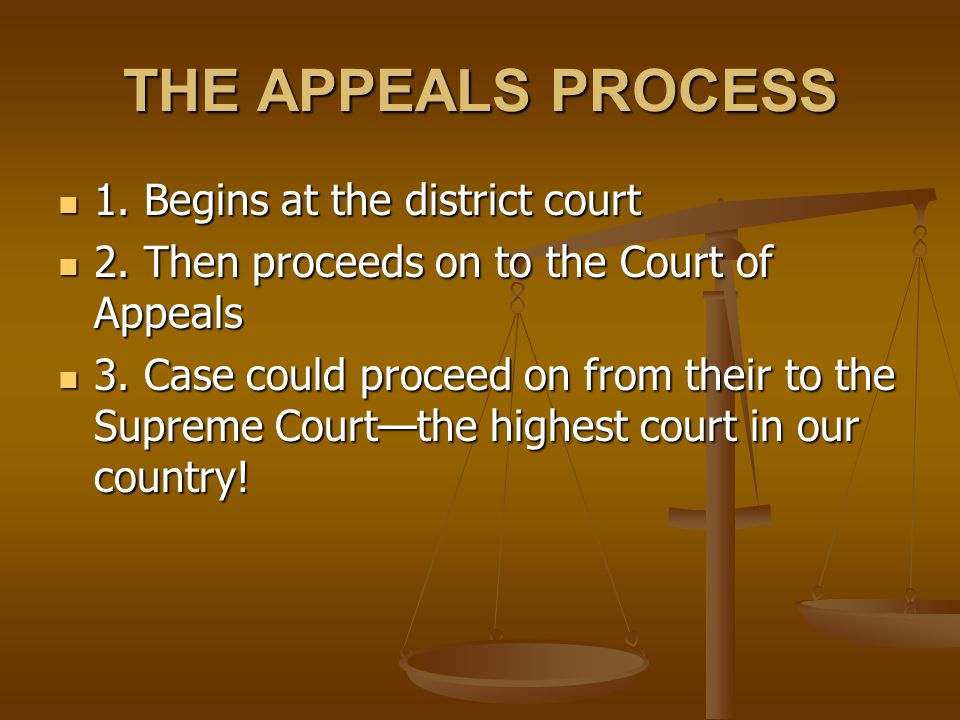 THE APPEALS PROCESS 1. Begins at the district court